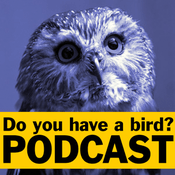 Podcast Do you have a bird? - Podcast