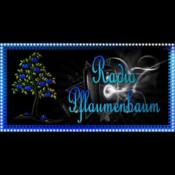 Radio Radio Pflaumenbaum