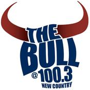 Radio The Bull 100.3 FM