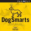 DogSmarts