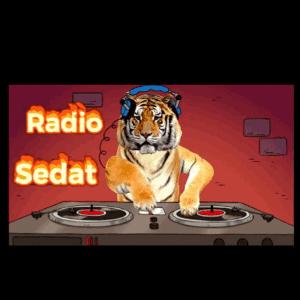 Radio Radio Sedat