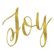 Radio joy-radioclub
