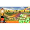Radio-Wattwurm