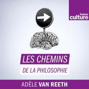 Podcast France Culture  -  Les Chemins de la philosophie