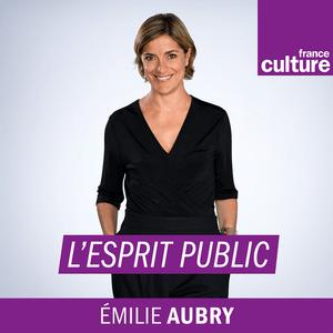 L'esprit public - France Culture