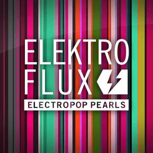ElektroFlux