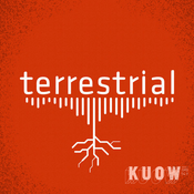Podcast terrestrial