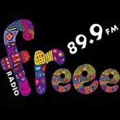 Radio Radio Freee