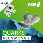 Podcast WDR 5 Quarks - Neun Monate