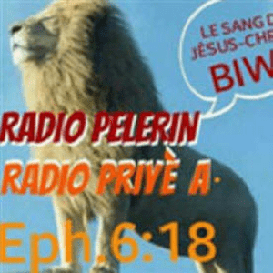 Radio Radio Pelerin 87.5 FM